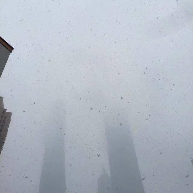 上海下雪了,你那里呢?